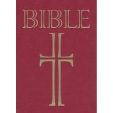 Bible - ekumenický překlad (1118)