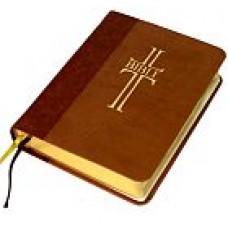 Bible - ekumenický překlad (1121)