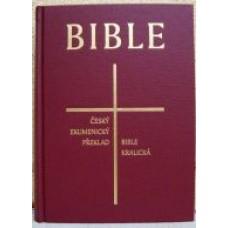 Bible synoptická