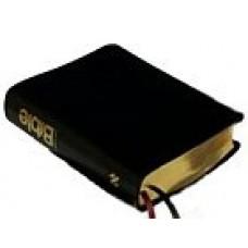 Bible 21 (kůže)