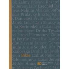 Bible - ekumenický překlad (1157)