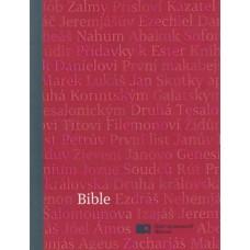 Bible - ekumenický překlad (1158)